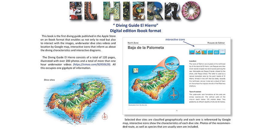 Plan your dive trip to El Hierro